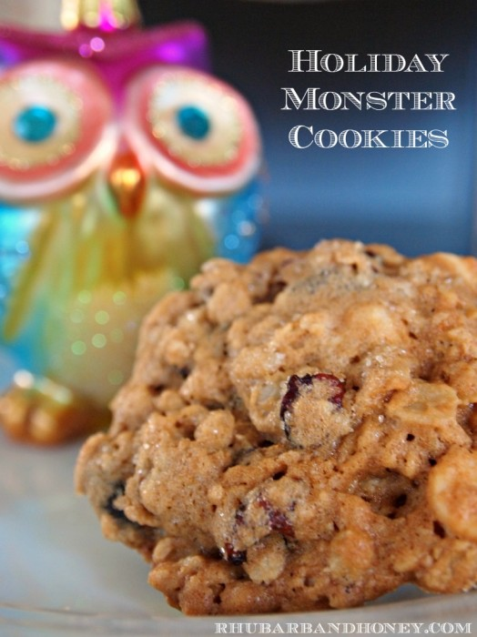 Monster Cookie Close-up