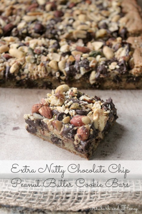 Extra Nutty Chocolate Chip Peanut Butter Cookie Bars