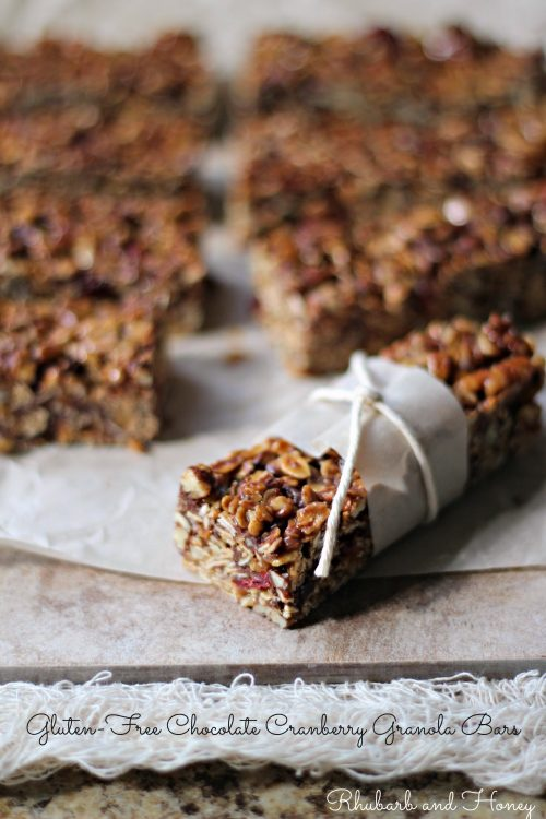 Gluten-Free Chocolate Cranberry Granola Bars